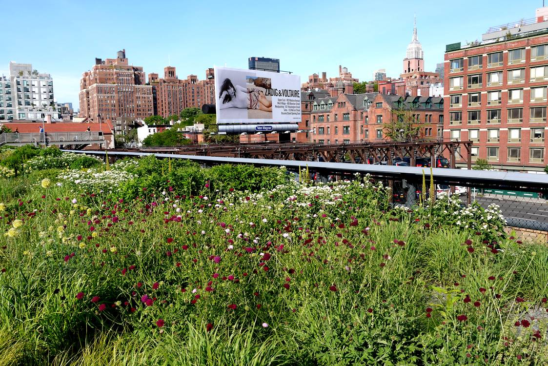 high line new york buildings