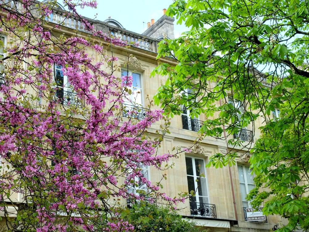 bordeaux-jardin-public-printemps_blog detours du monde