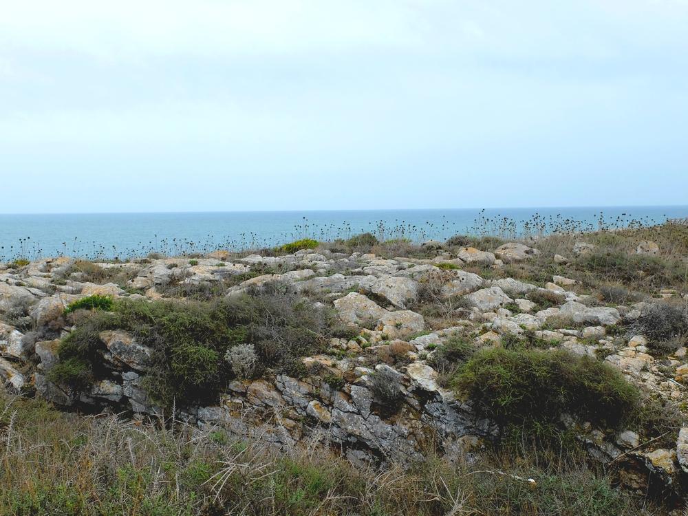 algarve sauvage portugal