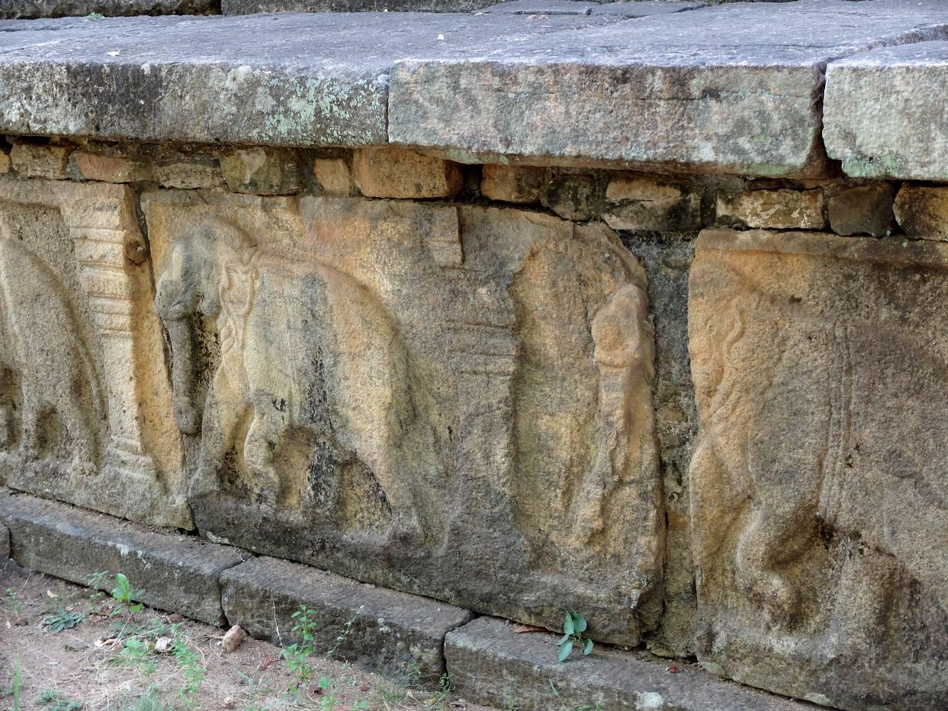 polonnaruwa frise elephants