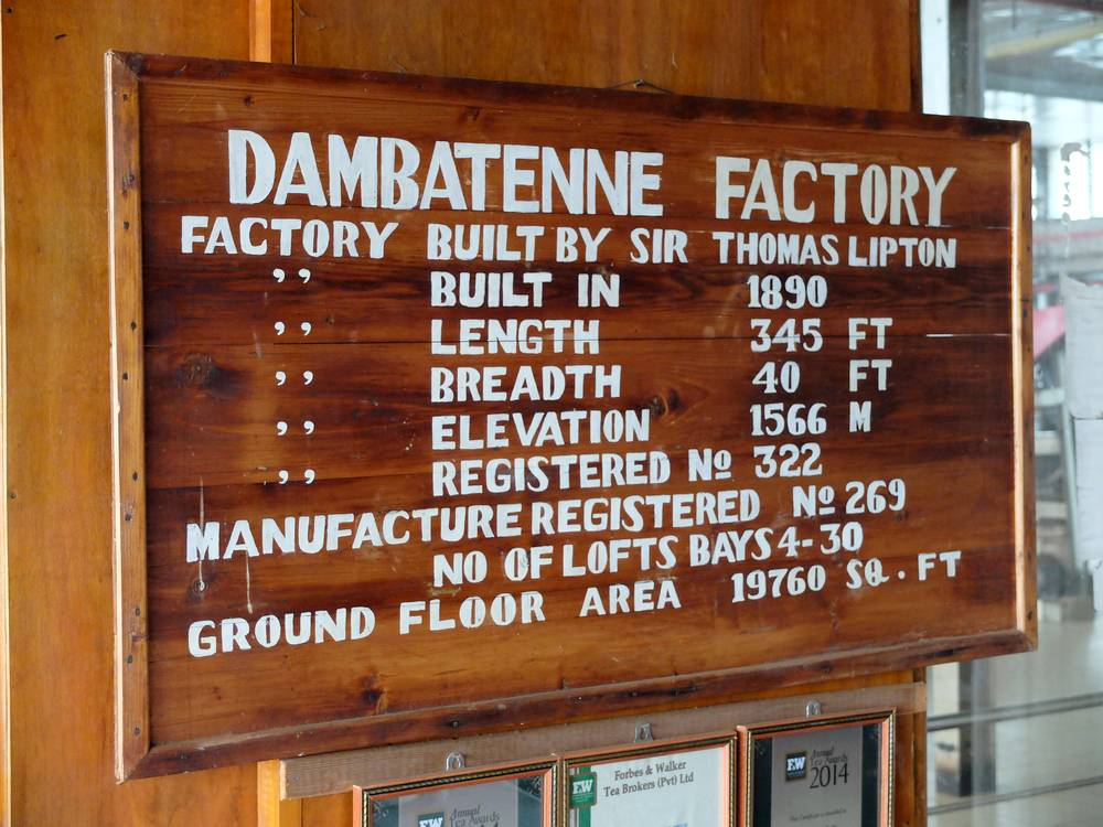 dambatenne factory sri lanka