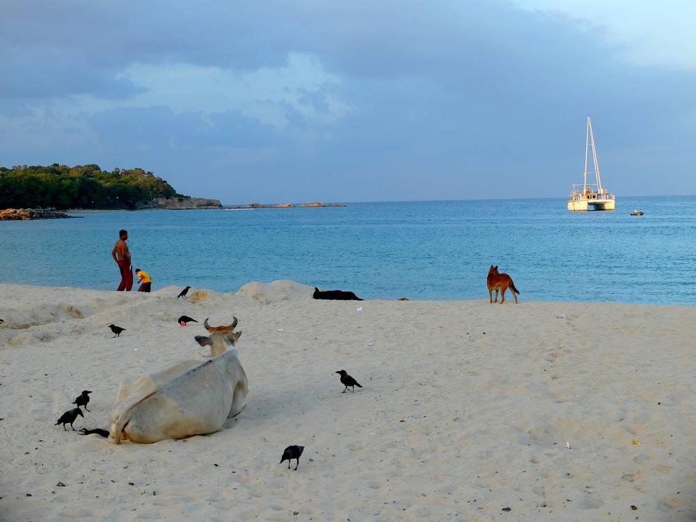 trincomalee plage centrale